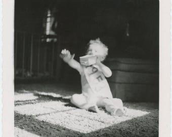 Vintage Snapshot Photo: 1953 (712626)