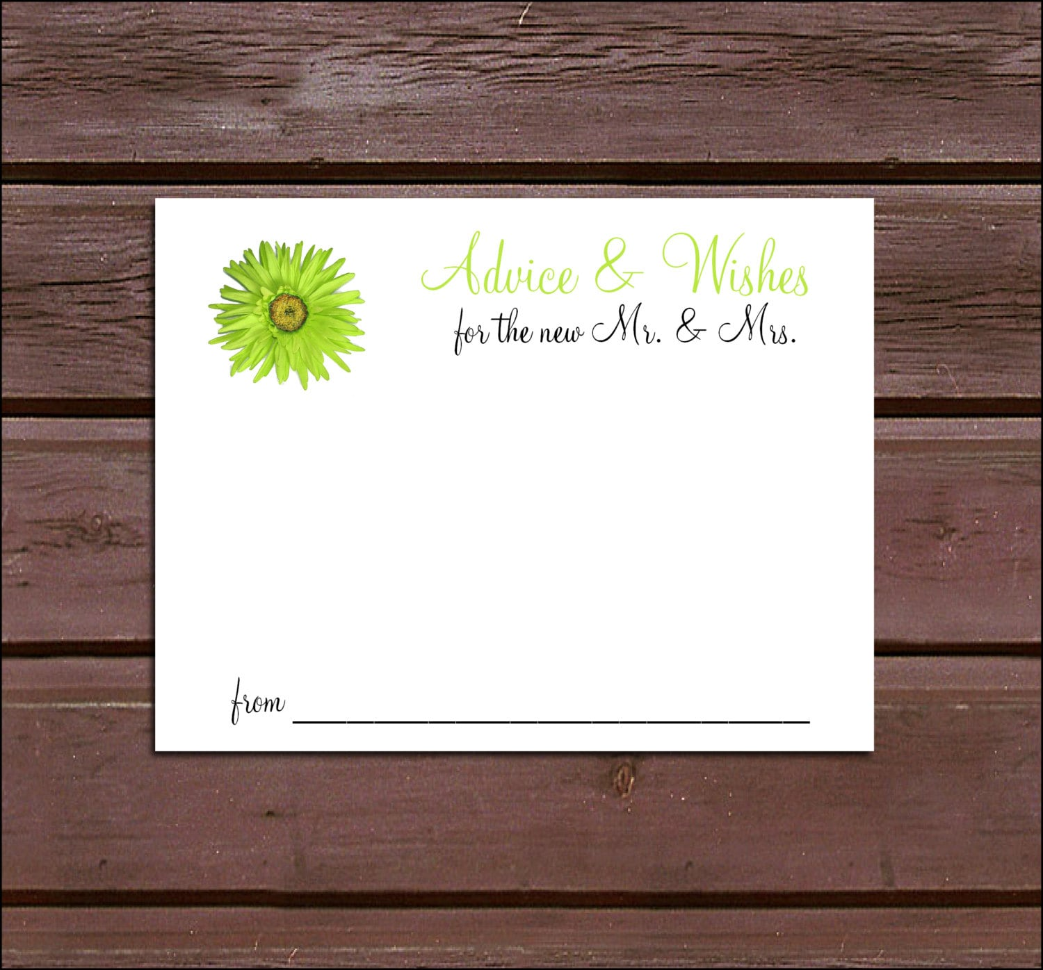 100 Lime Green Daisy Advice and Wishes. Wedding Favors