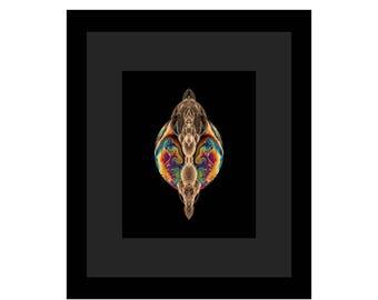 THE WASP - Black Frame / Black Matte