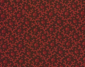 Barbara Brackman Civil War Reunion fabric in red.