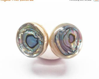 25% OFF Rainbow Bulls Eye Abalone Gemstone . 12mm Round Domes . Sterling Silver Posts Studs Earrings . Shiny Rainbow, Brown . Free Shipping