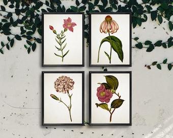 Set of 4 Vintage Botanical Prints - Digital Download Instant Art Print - Vintage Art Print - Vintage Illustration - Botanical Illustration