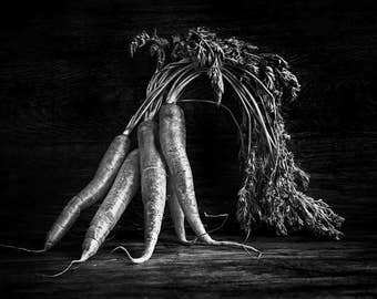 Wall Print - Kitchen art photography - Black & White Bunch of Carrots - fine art by Cath Lowe