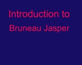 Bruneau Jasper Intro