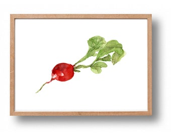 radish print, Kitchen art, Radish watercolor print, red, Vegetables art, Botanical painting, foodie gift, radish art, farmer market, green