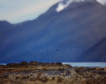 Alaska Beach Digital Backdrop