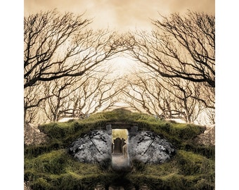 Photography Of Ireland, The Portal, Ireland Mystical Photo, The Emerald Isle, Green Gold Trees Photography