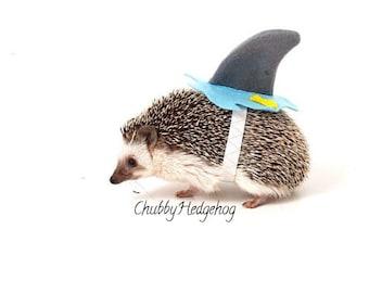 SHARK Costume Hedgehog / Guinea pig  sc 1 st  Etsy & Pet Costumes | Etsy