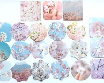 Kawaii Cherry Blossom Sakura planner sticker flakes