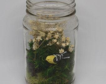 Moss Terrarium with Yellow Bird