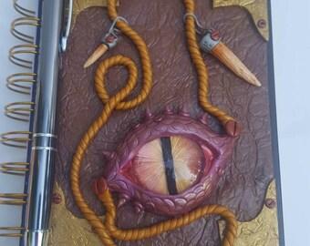 Dragon hunters journal/notebook.