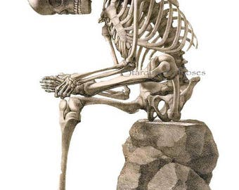 ANTIQUE Art Print Skeleton Seated - INSTANT DIGITAL Download - Anatomy Science Junk Journal Altered Art to Frame Scrapbooking Crafts no3380