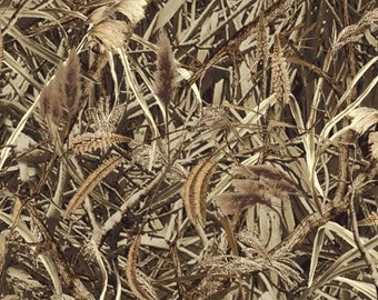CAMO - Marsh Grass - Camouflage Cotton Quilt Fabric - by Whistler Studios for Windham Fabrics - 38924-X (W993)