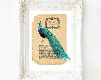 Peacock Print Vintage Dictionary Page Illustration Decor Home