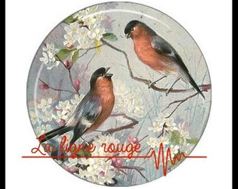 Shabby bird (3275) - Bird, Vintage Cabochon with or without stand depending on your choice