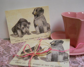 Set of 6 Standard Postcards - Cute Puppies - Old Fashioned - Dogs