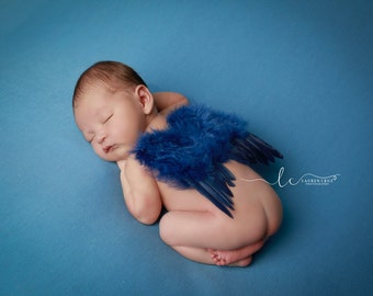 BOYS Blue Feather Angel Baby Wings for photo shoots for newborn babies! Boy, Bebe, muchacho,  photographer, Lil Miss Sweet Pea