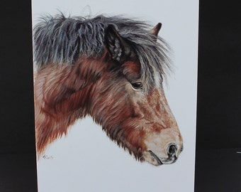 New Forest pony watercolour Card