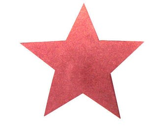 Rosewood applique star suede velvet leather