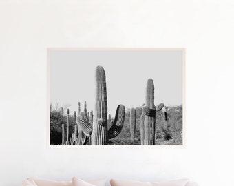 Desert Print Black and White, Desert Photography, Desert Art Printable, Desert Decor Wall Art, Minimalist Decor, Download, Cactus, sc1bwl