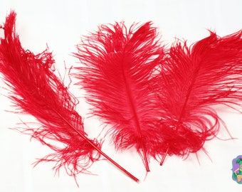 USA Seller 10 Pcs. RED Ostrich Feather Plumes Tails 13 to 18 inches Long. Mardi Gras, Feather CenterPieces, Samba Costumes, Burlesque