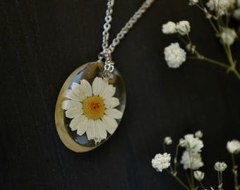 Terrarium jewelry Resin jewelry Chamomile jewelry Botanical jewelry Botanical resin necklace  Nature Jewelry Resin flower necklace