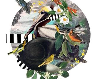 The Audubon Remixes - A3 Art Print, Sentinels, Fox & Lynxs', Squirrels in Sicily, Collage, Stripes, Botanicals, Birds, Animals, Vintage