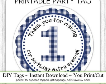 Instant Download - Party Printable Tag, Blue Gingham Party Tag, 1st Birthday Party Tag, DIY Cupcake Topper, You Print, You Cut