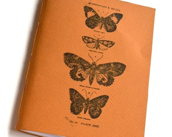 Natural history Notebook, Butterfly Notebook