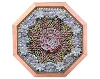 "Nantucket Sailor's Valentine Seashell Mosaic Design ""Siasconset Rose"""