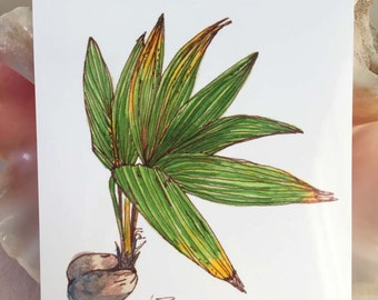 Sprouting Palm Tree, tropical art, watercolor