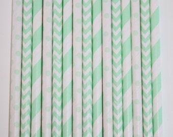 50 Mint Paper Straw Mix  PAPER STRAWS birthday party bridal shower event cake pop sticks Bonus diy straws flag