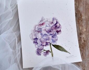 Hortensia bloem paars