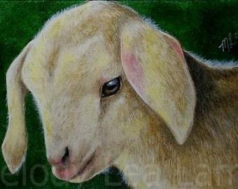 Farm Animal Baby Goat Art Melody Lea Lamb ACEO Print