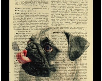 Pug Dog Puppy Butterfly on Nose Cute - Dictionary Print Book Page Art