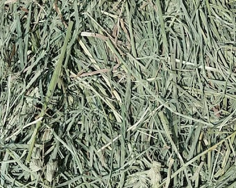 3 lbs organically grown orchard hay, great for rabbits,chinchillas, Guinea pigs,  and other small animals