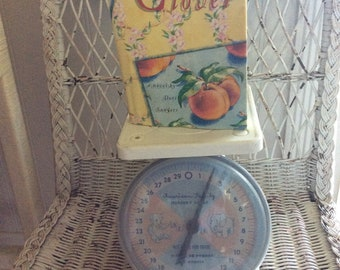 Vintage Mid Century Nursery Scale, American Family, 30lb, Pink and Blue Elephant And Bear