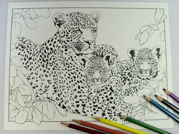 Leopard Coloring Pages Pdf : Karula xongile hosana leopard cat and baby cubs printable