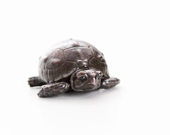 Tortoise hatchling with head emerging from shell. Open edition bronze.