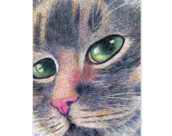 "cat art print of original cat drawing  ""A Cool Calico Cat"" cat portrait, cat lover's gift,  watercolor pencil drawing, desk decoration"