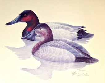 Louis Frisino Duck Pair Limited Edition Signed Numbered 324/500  Litho Print- Matted & Framed