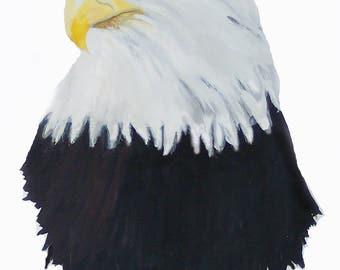 Eagle Card Set