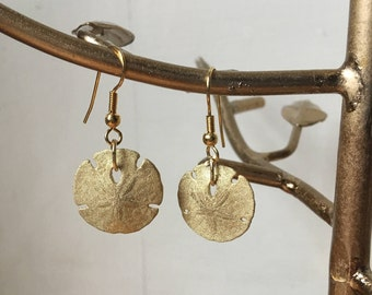 Real Sand Dollar Earrings