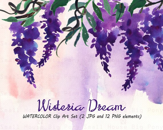 Watercolour Floral Clipart: 12 PNG separate elements. Handmade, watercolour clipart, wedding diy elements, flowers - Wisteria Dream