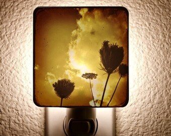 Aged Flowers Night Light