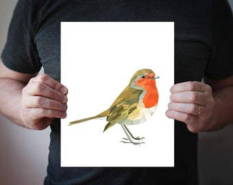 Robin poster Colorful decor Animal Bird art Nursery print newrobin