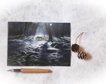 Winter scene card | christmas card | greetings card | winter card | photo card | photo print | hornsey | st marys tower | church garden |
