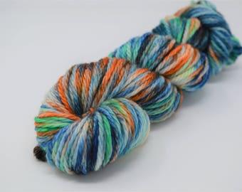 Cozy Bulky, hand dyed yarn, handdyed yarn, hand dyed bulky yarn, hand painted yarn, bulky yarn, bulky weight, Calypso