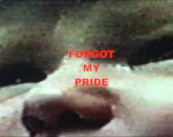 Forgot My Pride