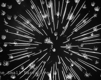 Fine art photography, photography prints, download, printable art, prints, posters, firework, black and white, abstract